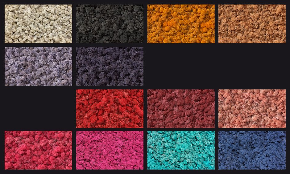 Moos_Colours